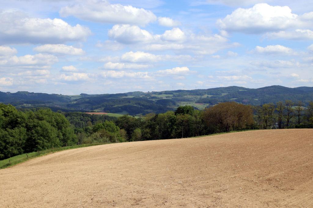 Blick über den Odenwald