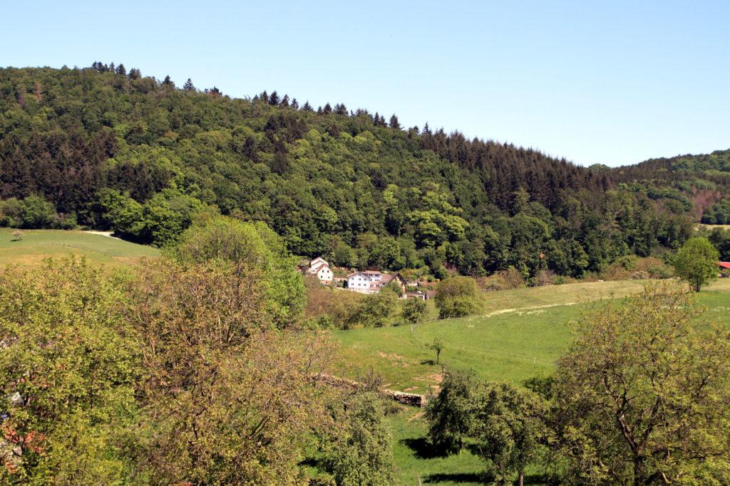Einsamer Hof am Waldrand