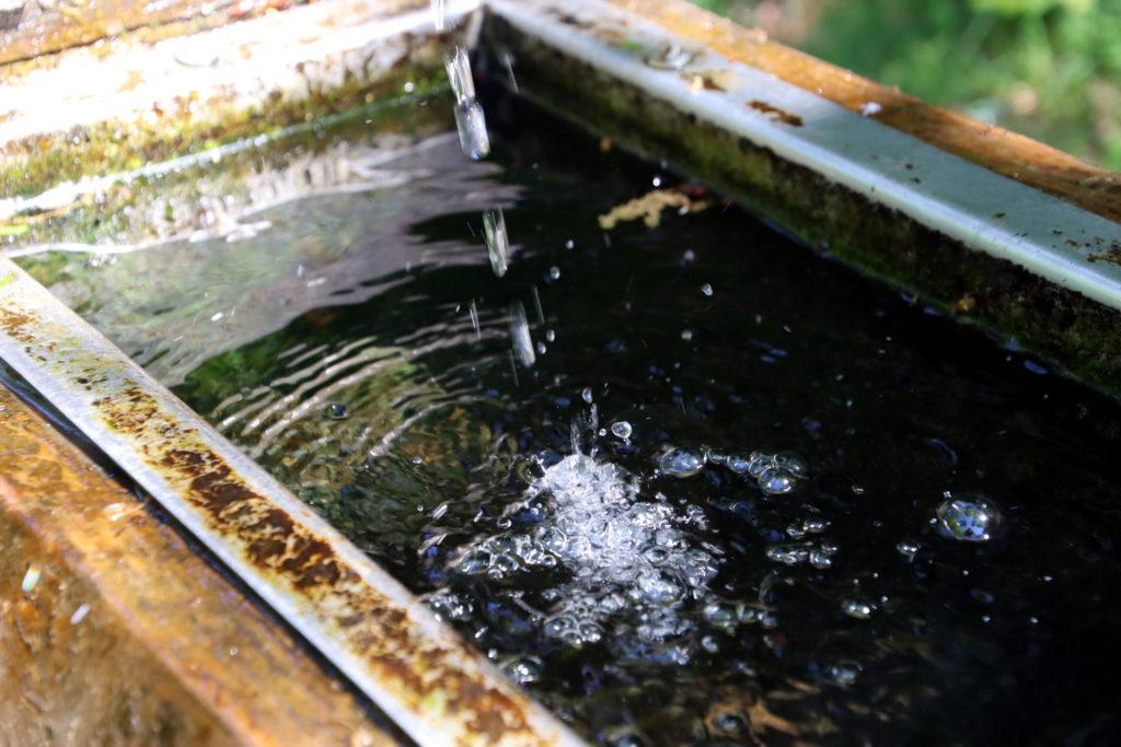 Wassertrog