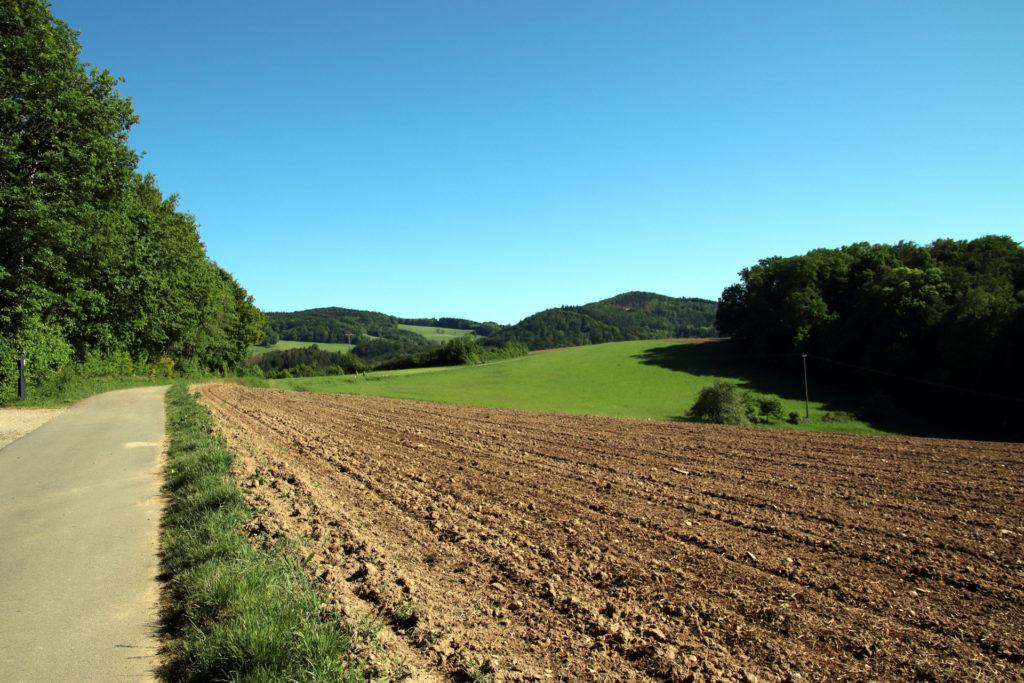 Blick zurück über den Odenwald