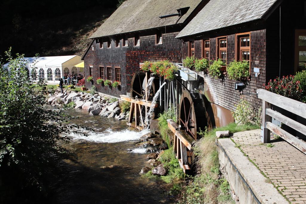 Furtwangen – Rundweg Balzer Herrgott zur Hexenlochmühle
