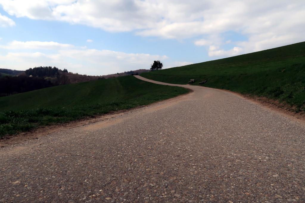 Ziegelhausen – Eichelberg – Birkenau (E1)